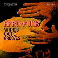 Vintage Exotic Grooves — Paolo Ferrara