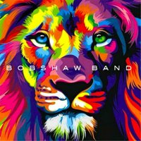 Natural Animal — Bobshaw Band