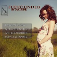 Surrounded By Nature (Music for Pregnancy, Birth and Relaxation) — From the Womb to the World