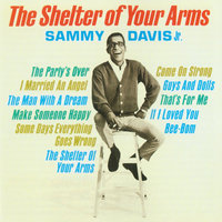 The Shelter Of Your Arms — Sammy Davis, Jr.