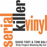 Dirty Fingers (Washing My Car) — David Tort, Toni Bali, Simonzehn