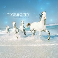 Pretend Not To Love — Tigercity