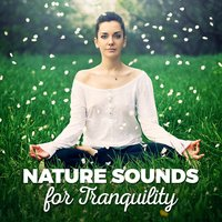 Nature Sounds for Tranquility — Nature Sounds for Sleep and Relaxation