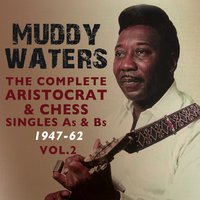 The Complete Aristocrat & Chess Singles As & BS 1947-62, Vol. 2 — Muddy Waters