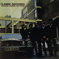 Shake Some Action — The Flamin' Groovies