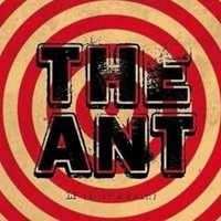 LP (Love & Pain) — THE ANT