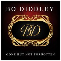 Gone But Not Forgotten — Bo Diddley