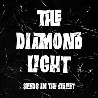 Seeds in the Street — The Diamond Light