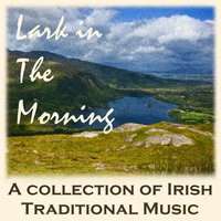 Lark in the Morning: A Collection of Irish Traditional Music — сборник