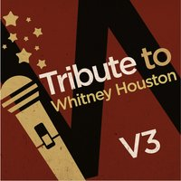 Tribute to Whitney Houston, Vol. 3 — Flies on the Square Egg