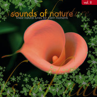 Sound of Nature Volume 2 — сборник