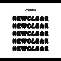 Newclear — Analogfish
