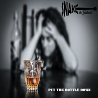 Put the Bottle Down — Snake the Guitarist