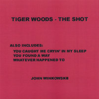 Tiger Woods - The Shot — John Winkowski