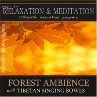 Forest Ambience With Tibetan Singing Bowls: Music for Relaxation and Meditation - Single — Music for Relaxation & Meditation