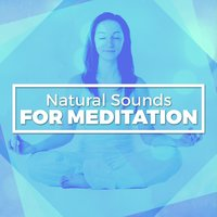 Natural Sounds for Meditation — Nature Sounds Meditation
