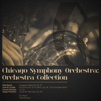 Chicago Symphony Orchestra: Orchestra Collection — Chicago Symphony Orchestra