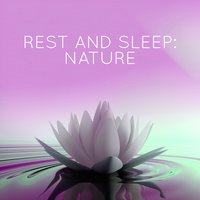 Rest and Sleep: Nature — Nature Sounds for Sleep and Relaxation
