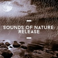 Sounds of Nature: Release — Sounds Of Nature Relaxation