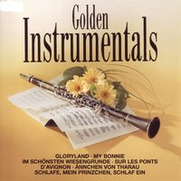 Die Goldene Klarinette - The Golden Clarinet - Instrumentals — Holger Voss Und Das Studio-Orchester Harry Topel