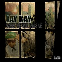 Where the Wild Things Are — Jay Kay