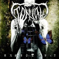Expectancy — Tantal