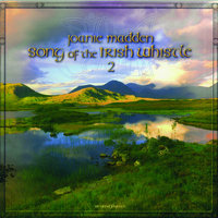 Song of the Irish Whistle 2 — Joanie Madden