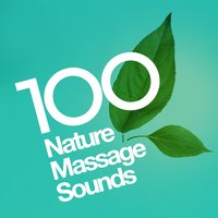 100 Nature Massage Sounds — Massage Tribe, Massage Music, Sleep Sounds Of Nature, Massage Music|Massage Tribe|Sleep Sounds of Nature