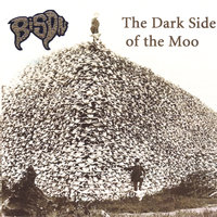 The Dark Side of the Moo — Bison
