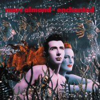 Enchanted — Marc Almond