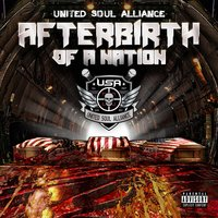 Afterbirth of a Nation — United Soul Alliance