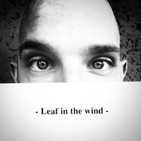 Leaf in the Wind — Bigo