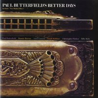 Complete Albums 1965-1980 — Paul Butterfield Blues Band