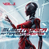 Electronica Afterhour Grooves, Vol.1 — сборник