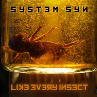 Like Every Insect — System Syn
