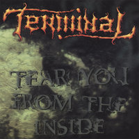 Tear You From The Inside — Terminal