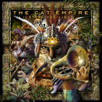 Steal the Light — The Cat Empire