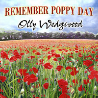 Remember Poppy Day — Olly Wedgwood