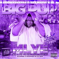 My Life Yo Entertainment (Slowed & Chopped) — DJ Red, Big Pup