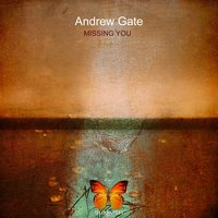 Missing You — Andrew Gate