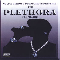 Various Artist Gold & Diamond Productions Presents Plethora — Stereotype Buster