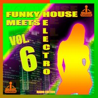 Funky House Meets Electro, Vol. 6 — сборник