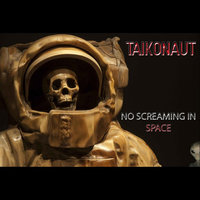 No Screaming In Space — Taikonaut