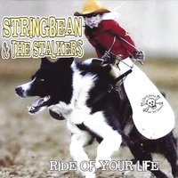 Ride of Your Life — Stringbean and the Stalkers