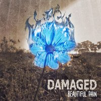 Beautiful Pain — Damaged