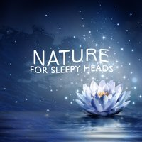 Nature for Sleepy Heads — Dreams of Nature
