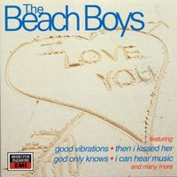 20 Great Love Songs — The Beach Boys