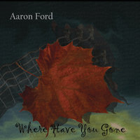 Where Have You Gone — Aaron Ford