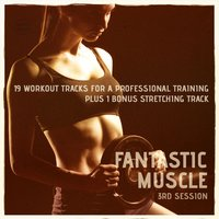 Fantastic Muscle, Vol. 3 — сборник