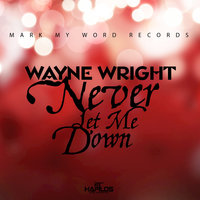 Never Let Me Down - Single — Wayne Wright